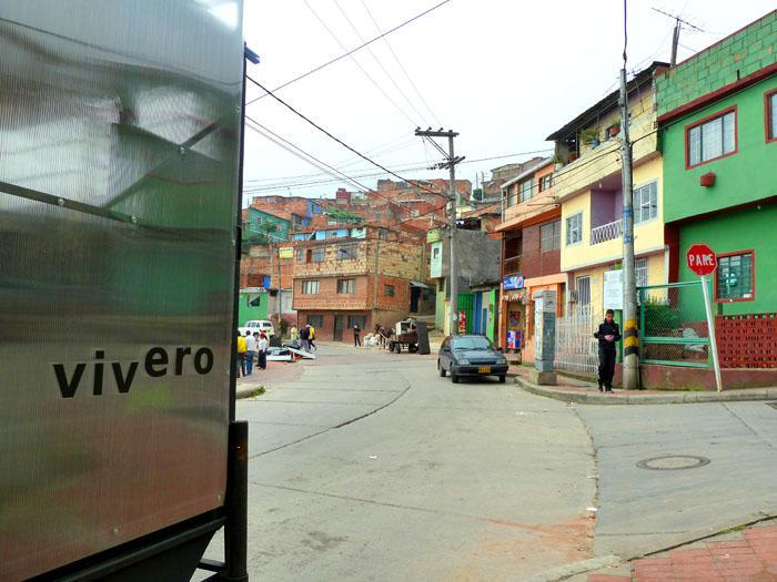 viveroaxp700 (4)